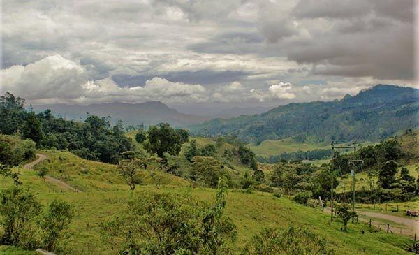 Caracteristicas de la zona andina